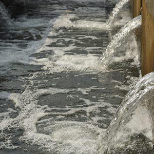JUEVES 10 DE OCTUBRE: LAVADO Y DESINFECCIÓN DE TANQUES DE ALMACENAMIENTO EN PLANTA LAS FLORES Y SALGAR